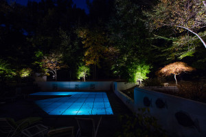 Residential Outdoor Lighting Design