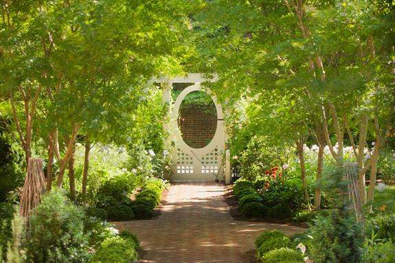 3north-Cary-Street-Garden